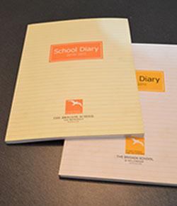 Portfolio School Dairy Design